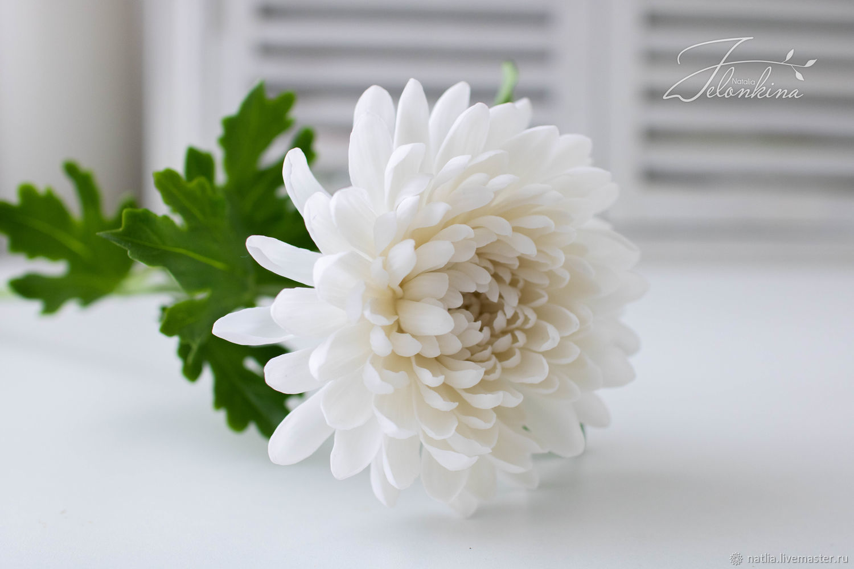 Хризантема из холодного фарфора. В НАЛИЧИИ, Цветы, Новокузнецк,  Фото №1