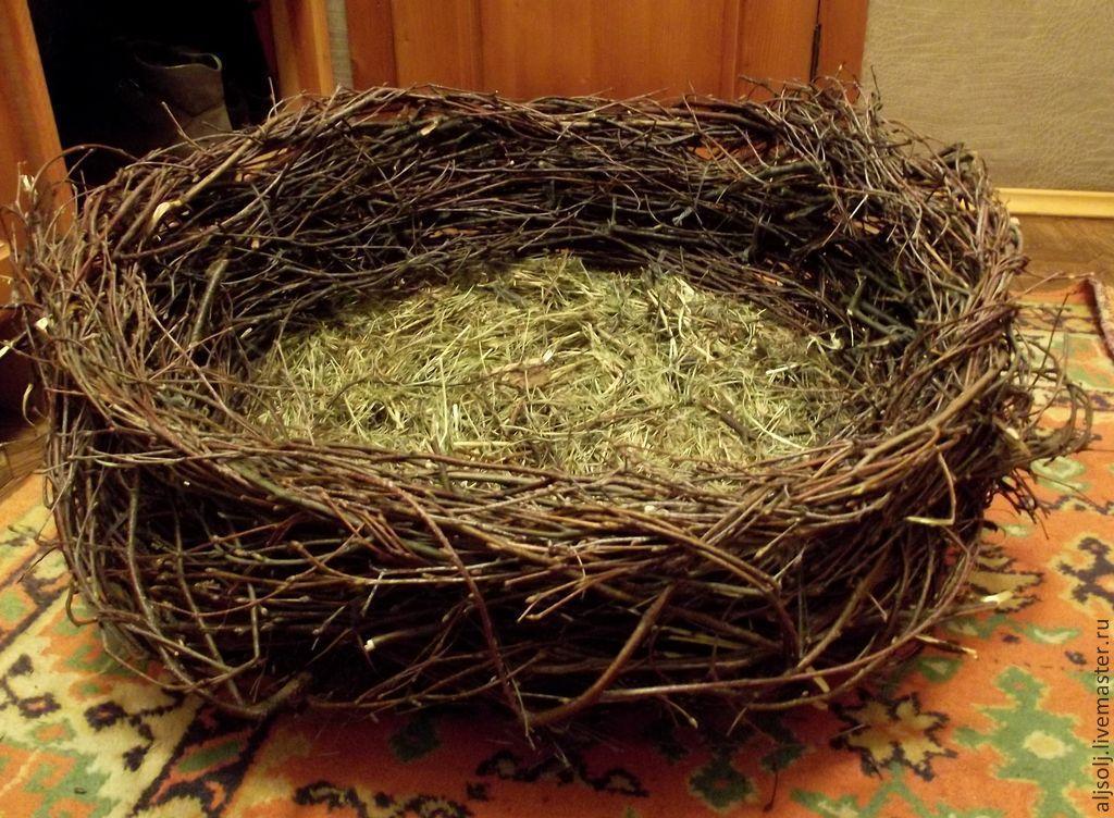 Как и из чего сделать гнездо для корелл