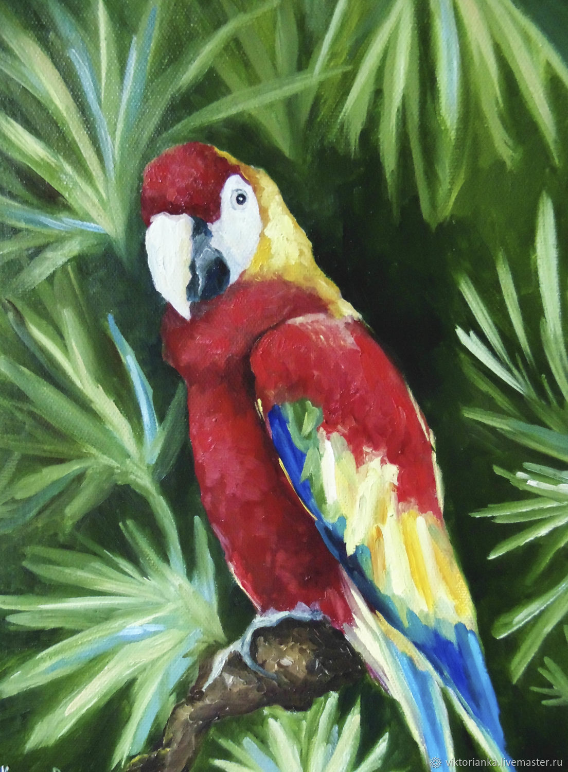 Red macaw parrot oil painting, Pictures, Moscow,  Фото №1