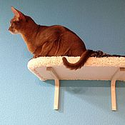 Для домашних животных, handmade. Livemaster - original item Wall shelves for cats buy. available in size.. Handmade.