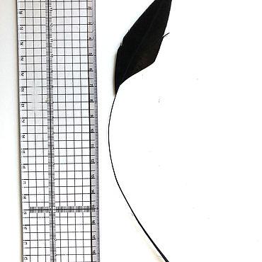 Материалы для творчества ручной работы. Ярмарка Мастеров - ручная работа Перья черные 20-25 см (мин. заказ - 20 штук). Handmade.