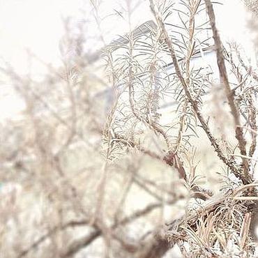 Картины и панно ручной работы. Ярмарка Мастеров - ручная работа ..трепет раннего утра.. и белый фото. Handmade.