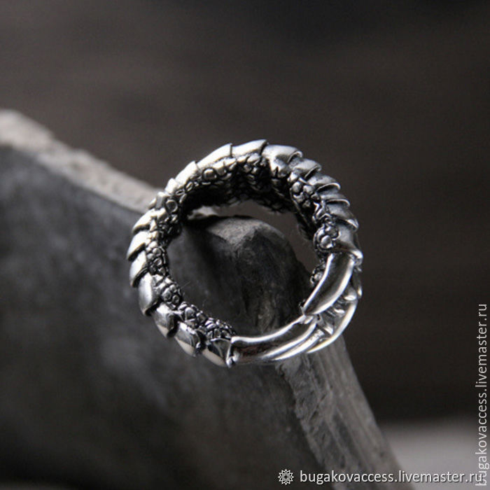 Ring Silver Eagle Claw, Rings, Moscow,  Фото №1