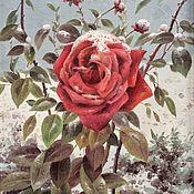 Картины ручной работы. Ярмарка Мастеров - ручная работа Заснеженная роза. Handmade.