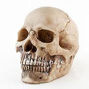 Материалы для творчества handmade. Livemaster - original item Silicone mold for soap Skull 2. Handmade.
