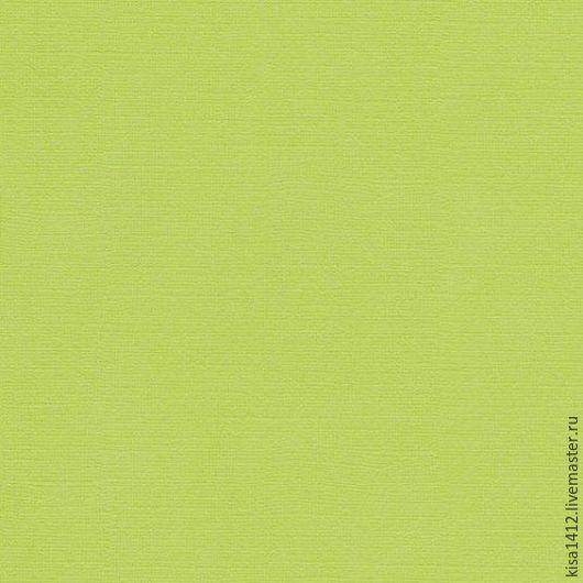 Кардсток  SCB172312107  Салатовый