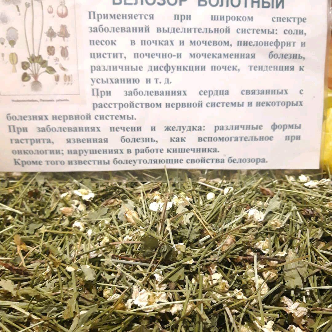 Белозор,перелойка, Растения, Улан-Удэ,  Фото №1