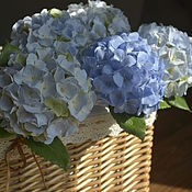 Цветы и флористика handmade. Livemaster - original item Sky blue hydrangea. Sculpture made of polymer clay.. Handmade.