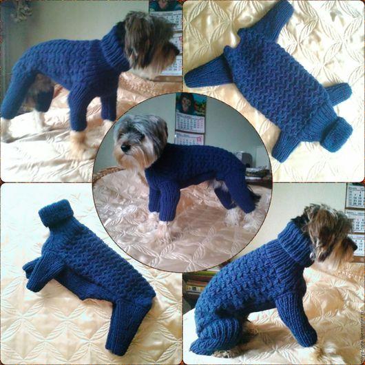 """Одежда для собак, ручной работы. Ярмарка Мастеров - ручная работа. Купить Одежда для собак. Комбинезон """"Гарик"""". Handmade. Тёмно-синий"""