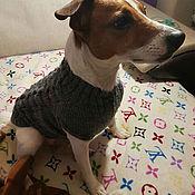 Для домашних животных, ручной работы. Ярмарка Мастеров - ручная работа Кофта вязаная для собак джек рассел. Handmade.