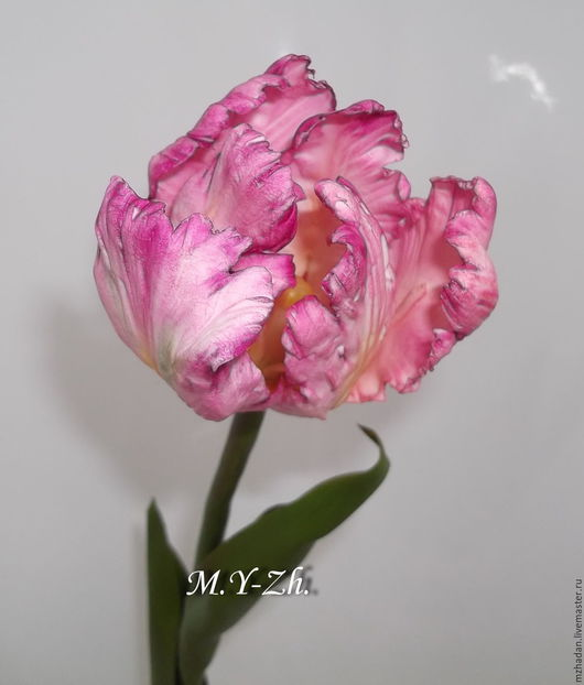 Тюльпан,тюльпан из полимерной глины,тюльпан попугайный