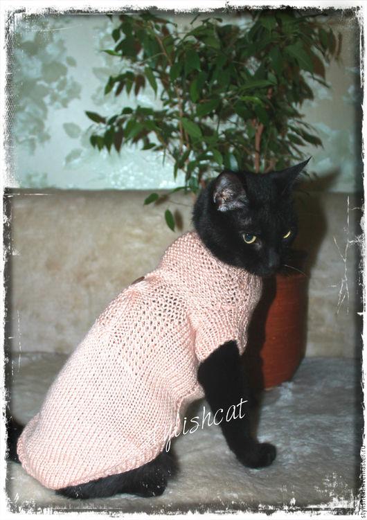 """Одежда для кошек, ручной работы. Ярмарка Мастеров - ручная работа. Купить Свитер для котов и кошек """" Сова"""". Handmade. Бежевый"""