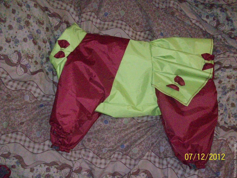 Собаки шитье одежда выкройки