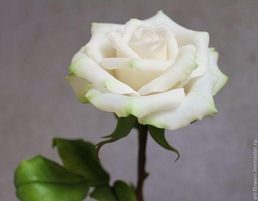 Цветы ручной работы. Ярмарка Мастеров - ручная работа. Купить Белая роза (холодный фарфор). Handmade. Белый, реалистичная флористика