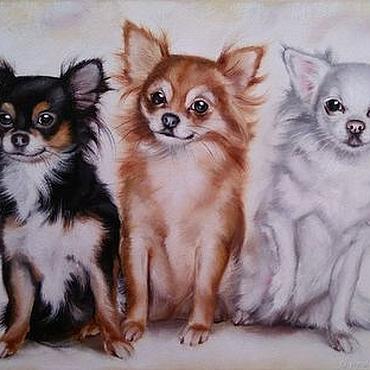 Картины и панно ручной работы. Ярмарка Мастеров - ручная работа Картина маслом с собачками чихуахуа Трио красоток. Handmade.