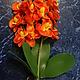 Материалы для флористики ручной работы. Букет орхидей 30 см. Мастерская Чудес. Ярмарка Мастеров. Орхидея фаленопсис, товары для творчества