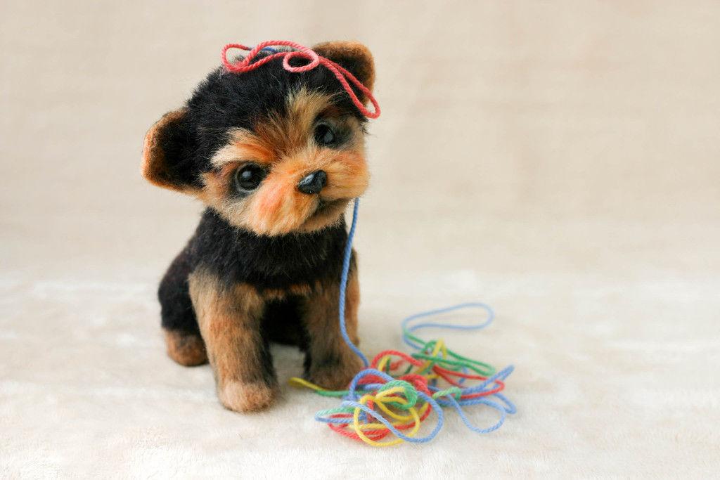 Валяные игрушки собаки