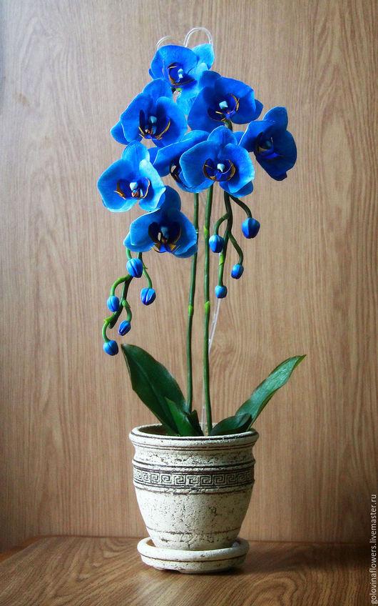 Цветы ручной работы. Ярмарка Мастеров - ручная работа. Купить Орхидея индиго из полимерной глины. Handmade. Синий, интерьерная композиция
