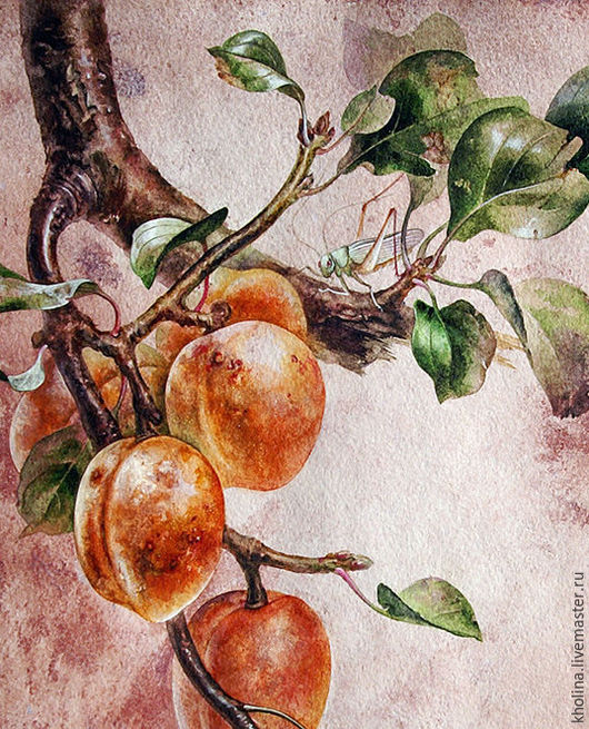 Картины цветов ручной работы. Ярмарка Мастеров - ручная работа. Купить Каллиграфия китайской тушью Старое абрикосовое дерево. Handmade.