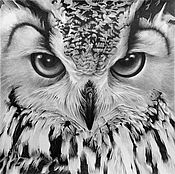 Картины и панно handmade. Livemaster - original item The painting is a Portrait of an owl, the paper. pencil, 40h40. Handmade.