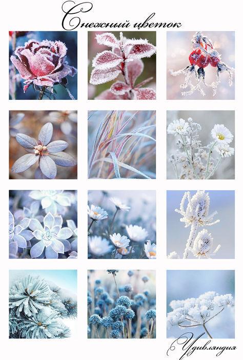 Для украшений ручной работы. Ярмарка Мастеров - ручная работа. Купить Кабошоны и картинки для кабошонов «Снежный цветок» с фотопечатью №39.. Handmade.