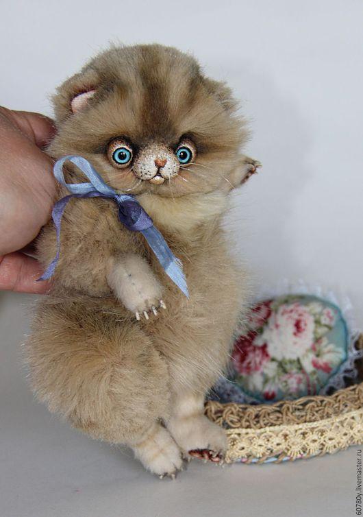 Мишки Тедди ручной работы. Ярмарка Мастеров - ручная работа. Купить Котенок Мика.. Handmade. Кошка, котята, шебби стиль