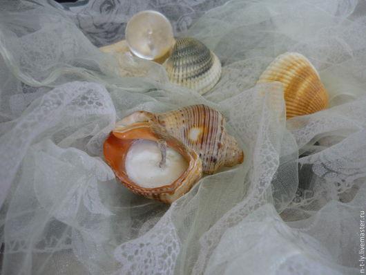 Экологическая фасовка возможна в раковины Черного моря по желанию заказчика