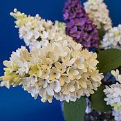Цветы и флористика ручной работы. Ярмарка Мастеров - ручная работа Букет сирени белой и фиолетовой. Handmade.
