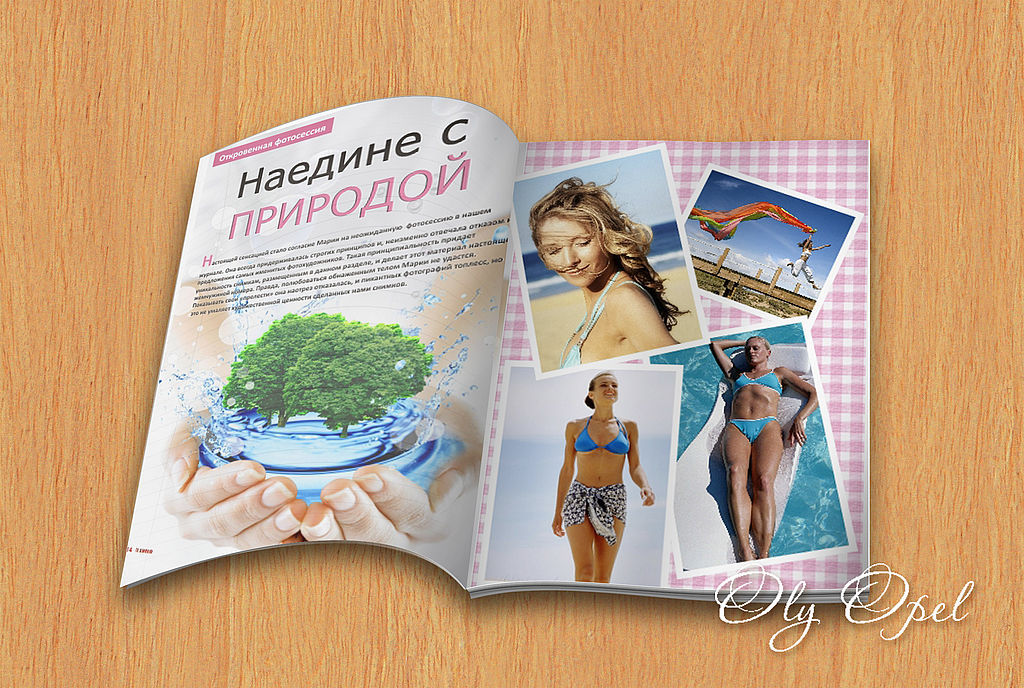 О журнале Бизнес   businessladyliferu