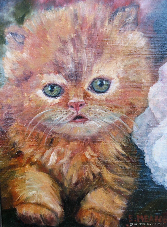 открытки с котиками, Открытки, Нижний Новгород,  Фото №1