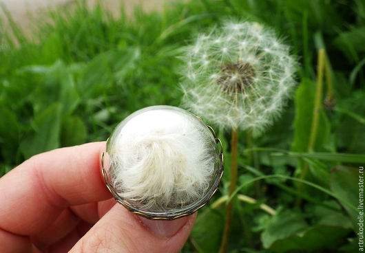Легкая нежная брошь Одуванчик. Полая стеклянная полусфера заполнена настоящими семенами одуванчика. Диаметр броши 3 см. Цвет фурнитуры античная бронза.