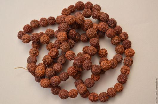 Для украшений ручной работы. Ярмарка Мастеров - ручная работа. Купить Бусины, орех рудракша,10-11 мм. Handmade.