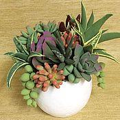 Цветы и флористика handmade. Livemaster - original item Succulents in a pot. Handmade.