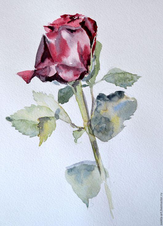 """Картины цветов ручной работы. Ярмарка Мастеров - ручная работа. Купить Картина акварелью """"Роза"""". Handmade. Комбинированный, букет, бордовый"""