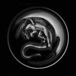 silver-dragon