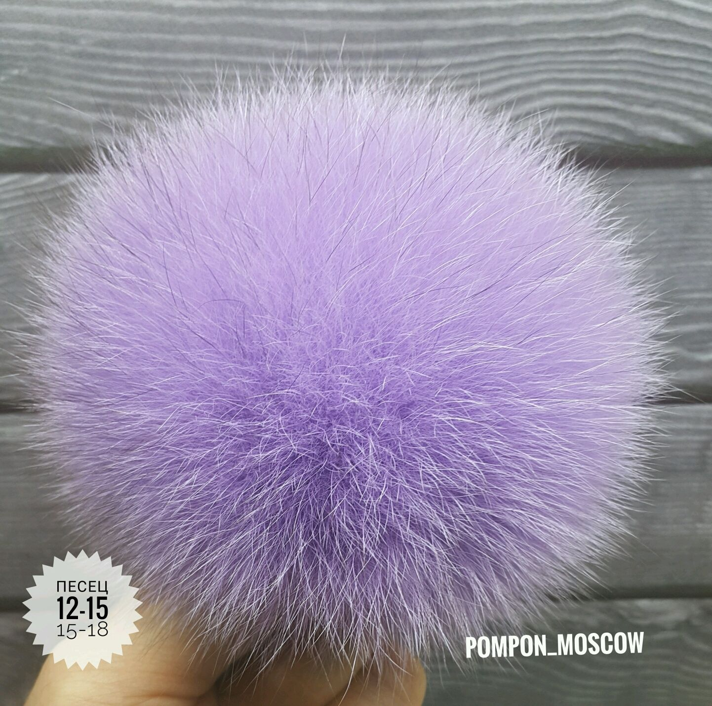 Pompon_moscow