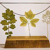 Витражи ручной работы. Ярмарка Мастеров - ручная работа Парящая рамка с гербарием. Handmade.