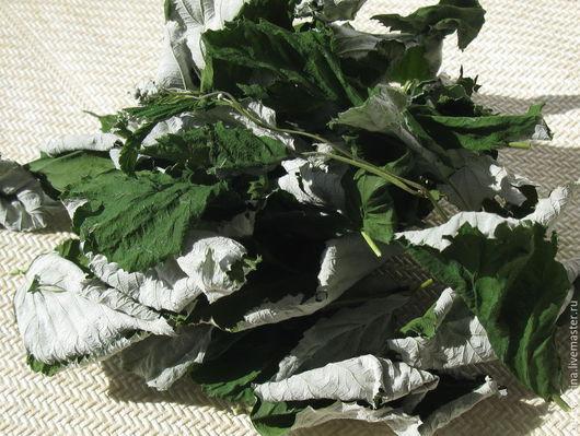 лист малины, лист малины сухой, сухой малиновый лист, фито сырьё, лист малины для фито сборов от простуды,малиновый