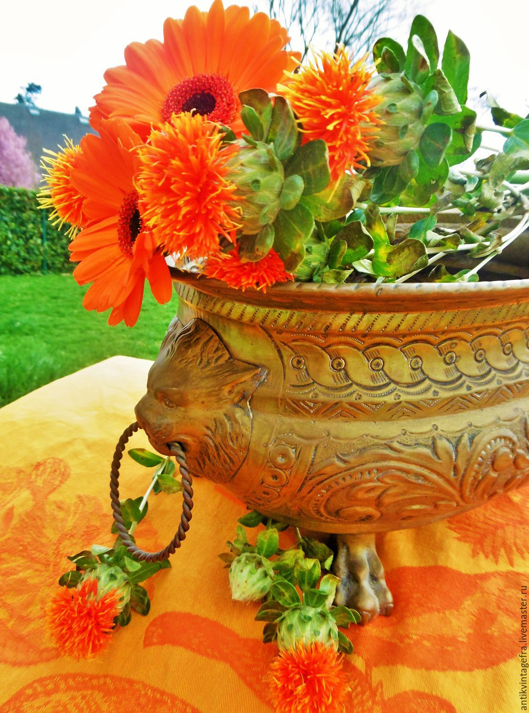 Цветы лилии фото притти вумен