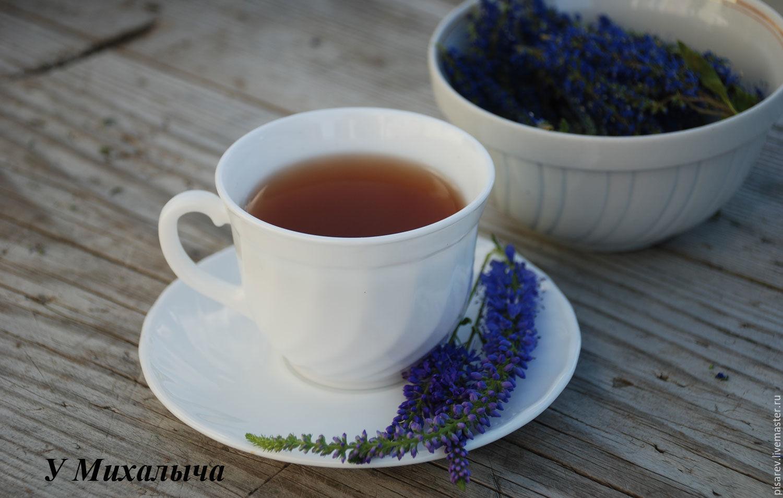 Вероника лекарственная, сухие цветы (сбор 2019 г.), Травы, Кашин, Фото №1