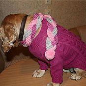 Для домашних животных, ручной работы. Ярмарка Мастеров - ручная работа Платье для собачки сиреневое. Handmade.