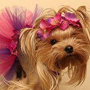 Для домашних животных, ручной работы. Ярмарка Мастеров - ручная работа Юбочка-пачка, ошейник, ободок для собак. Handmade.