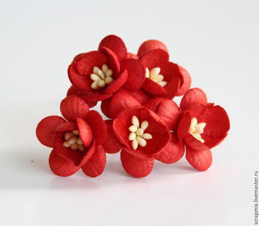 Открытки и скрапбукинг ручной работы. Ярмарка Мастеров - ручная работа. Купить Цветы вишни цвет красный. Handmade. Скрапбукинг