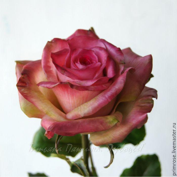 ЛЮБИМАЯ. роза. флористическая полимерная глина, Цветы, Москва,  Фото №1