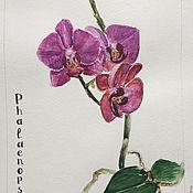 Картины и панно ручной работы. Ярмарка Мастеров - ручная работа Орхидея , акварель. Handmade.