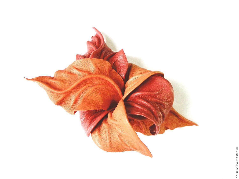 Цвет красный аврора