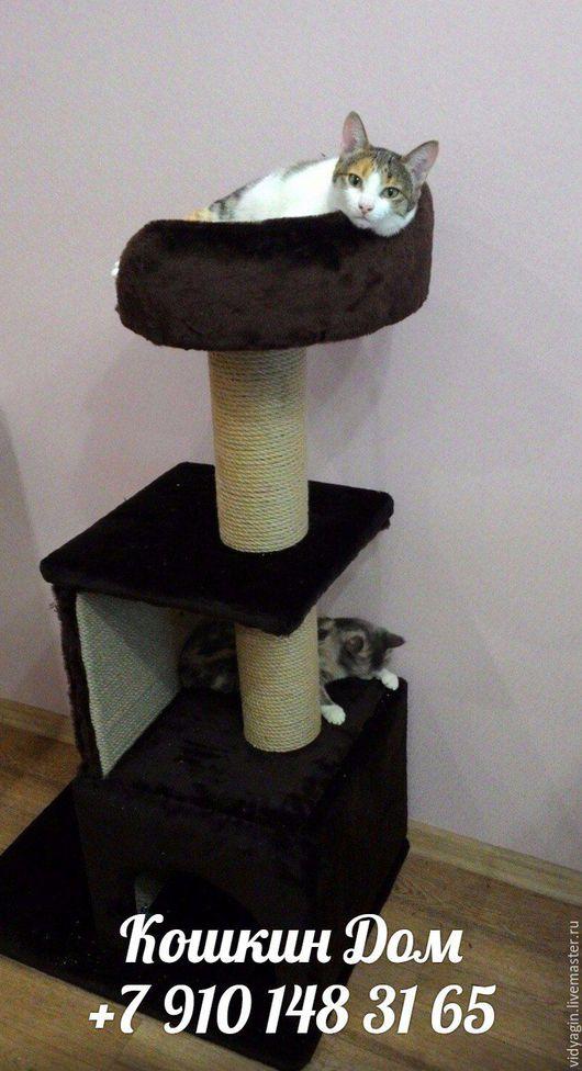 Аксессуары для кошек, ручной работы. Ярмарка Мастеров - ручная работа. Купить Кошкин дом с когтеточкой и лежанкой. Handmade. Кошка, котик