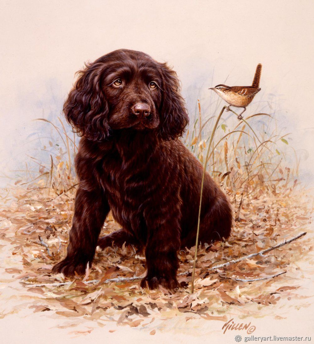 Oil painting Portrait of a pet. dog, Pictures, St. Petersburg,  Фото №1
