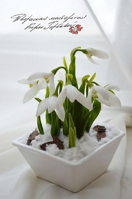snowdrops. interior arrangement, Flowers, Vladivostok,  Фото №1