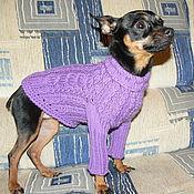 Для домашних животных, ручной работы. Ярмарка Мастеров - ручная работа Свитер для маленькой собаки или кошки. Handmade.